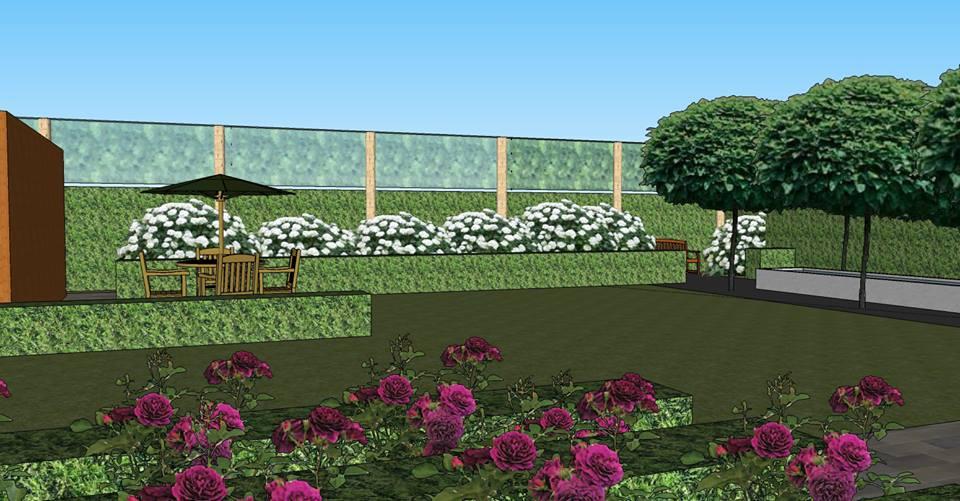 Tuinontwerp Ieper - Achtertuin met waterpartij, bomen, leiebomen, en tweede terras
