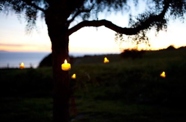 electrische kaarsen in boom