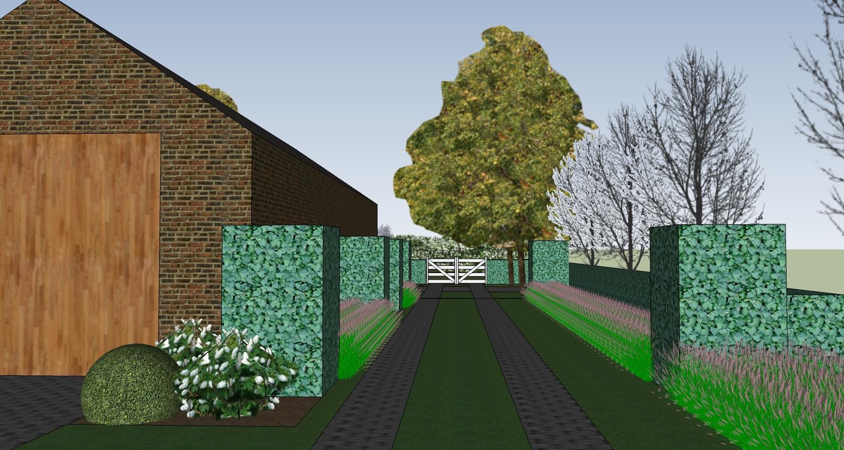 Tuinontwerp Kemmel - landelijke tuin - oprit en karrenspoor met groenmassieven van buxus afgewisseld met siergrassen