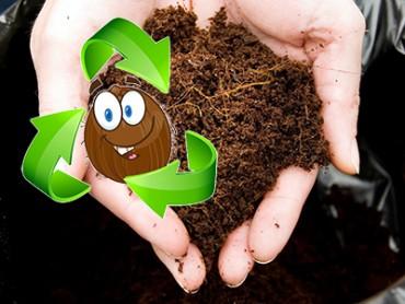 Ecologisch onderhoud